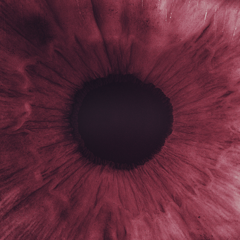 "Nicky Romero and Teamworx Reunite for Groovy Progressive Gem ""World Through Your Eyes,"" Featuring Joseph Feinstein"
