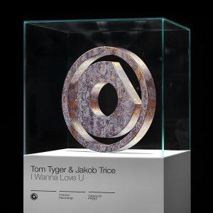 Tom Tyger & Jakob Trice - I Wanna Love U
