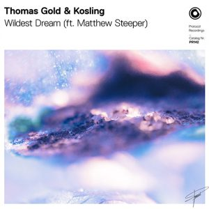 Thomas Gold & Kosling - Wildest Dream (ft. Matthew Steeper)