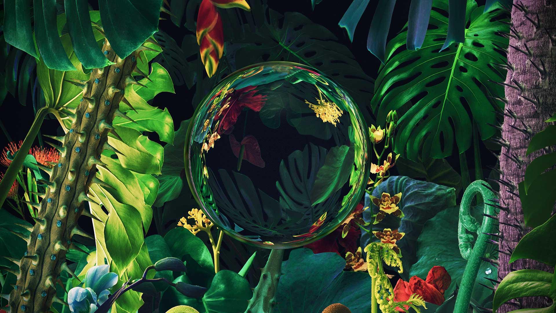 "Nicky Romero & Deniz Koyu Collaborate with Walk Off the Earth for ""Paradise"""